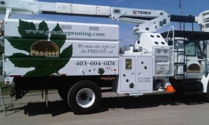 tree-cutting-truck